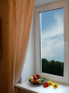 Окна ПВХ одностворчатые