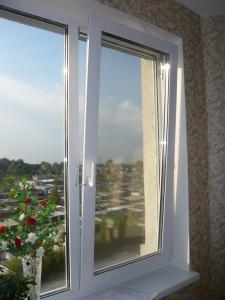 Окна ПВХ двустворчатые