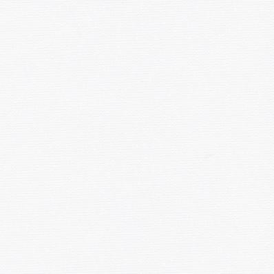 Рулонные шторы АЛЬФА BLACK-OUT 0225 белый купить по низкой цене в интернет-магазине okno19.ru