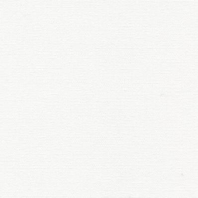 Рулонные шторы ОМЕГА 0225 белый купить по низкой цене в интернет-магазине okno19.ru