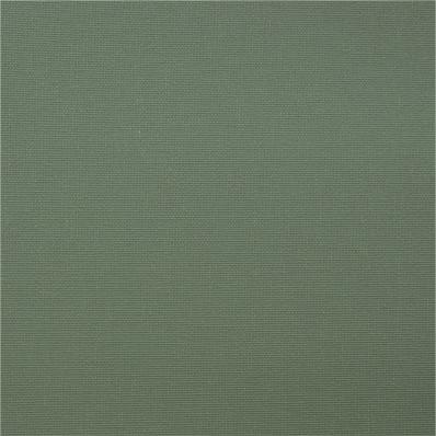 Рулонные шторы ОМЕГА 5850 св. зеленый купить по низкой цене в интернет-магазине okno19.ru