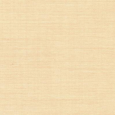 Рулонные шторы ПУЭБЛО BLACK-OUT 2406 бежевый купить по низкой цене в интернет-магазине okno19.ru